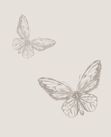 Vintage hand drawing butterfly vector eps 8 Vector