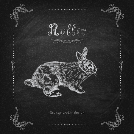 Vintage hand drawing rabbit vector eps 10 Vector