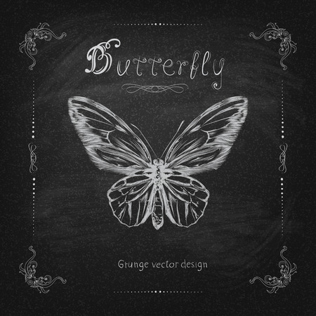 Vintage hand drawing butterfly vector eps 10 Vector