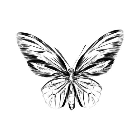 Zwarte logotype van vlinder geïsoleerd op een witte achtergrond. Vector illustratie in abstracte stijl
