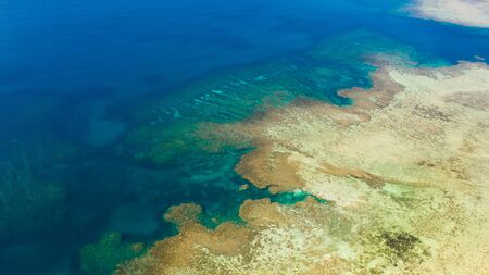 Texture of the seabed with coral reefs aerial view.Clear sea water in shallow water. 版權商用圖片