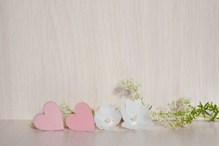 Two hearts. Background for congratulations with pink hearts. Valentines Day. Hearts and white flower. Stok Fotoğraf