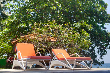 Sun chairs at the pool. Plastic sun loungers for tourists.
