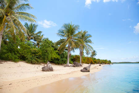 Tropical island with a white sandy beach. The nature of the Philippine Islands. Reklamní fotografie