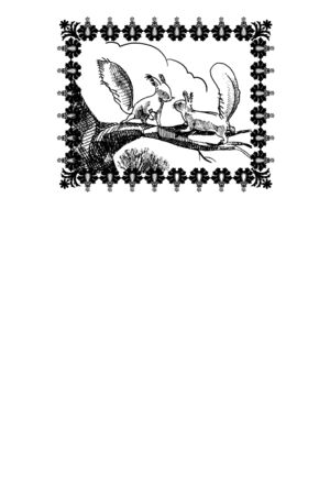 page with picture of squirrels and some empty space for any text below it. Stock Photo