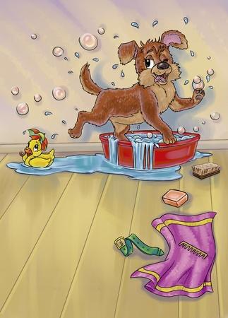 Bathing Dog photo