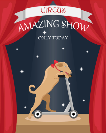 Circus trained dog on a scooter. Flat vector poster. Иллюстрация