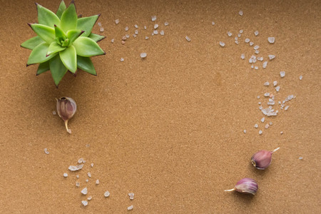 Photo background with Himalayan salt, potted plant and garlic. Flat lay. The view from the top. Cork background.