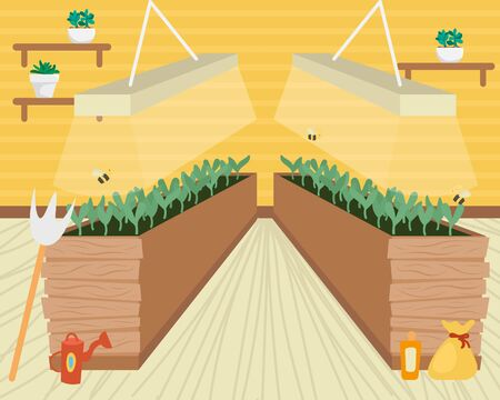 Beds with seedlings for growing vegetables in the apartment. Environmental consumption. Farm city. Ilustrace