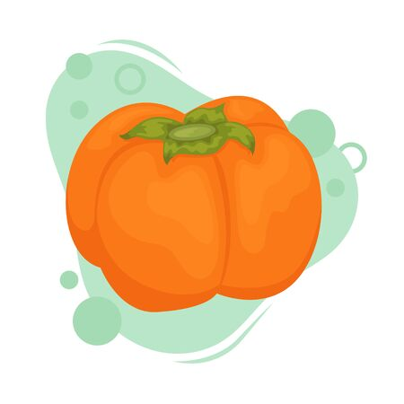 Ripe persimmon with a green leaf. Vector illustration of fruit. 일러스트
