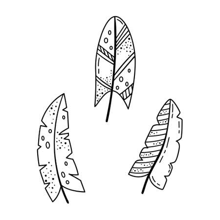 A set of doodle illustrations of bright cartoon feathers. A set of elements for the design.