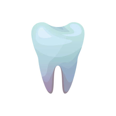 Vector isolated illustration of a molar tooth. Dental icon Ilustração