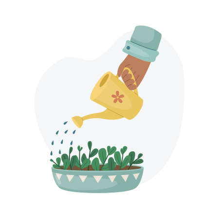 Watering a home plant in a pot from a watering can. Planting plants. Decorative plants in the interior of the house. Flat style. Illustration