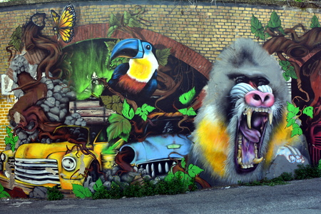 Street Art and Graffiti in Rome Casilina district Italy