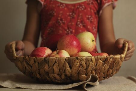 A child holds a wicker basket full of harvested apples. Autumn is the time to harvest. Natural products. Green crop Фото со стока
