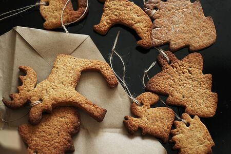 Animal gingerbread cookie. Minimalism in design and soft focus photos