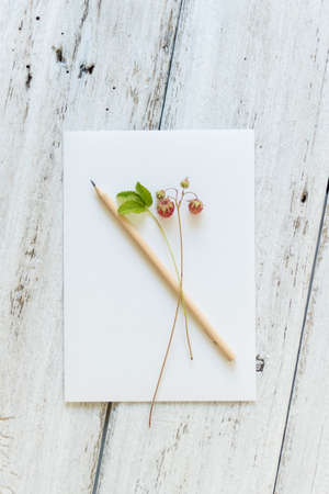blank sign on the table - beautiful background with space for text. Forest strawberries as decor