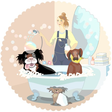 Girl, dogs cleaner, washing couple of dog,