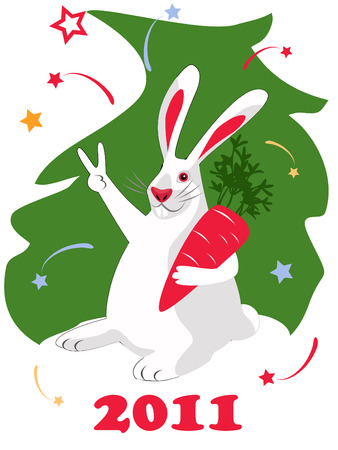 New Year postcard 2011, white bunny character Stock Vector - 8246206