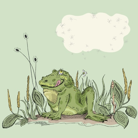 Funny hand drawn frog in green grass. Vector