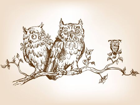 Three hand drawn funny owls, sitting on tree  branch.  Illustration