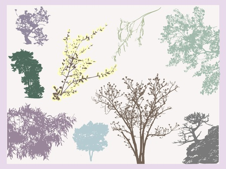 Set of natural tree and branches tracing silhouettes. Vector