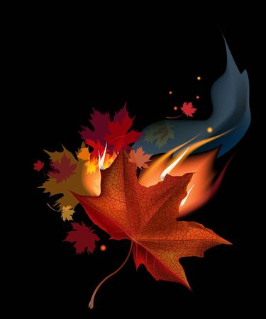 smock: Realistic brown autumn maple leaf in fire on black background.  Illustration