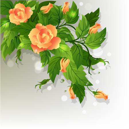 Beautiful background with yellow roses and green leafs.
