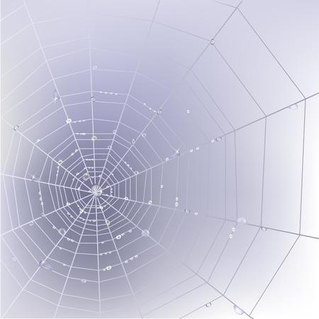 Stijlvolle achtergrond met spinnenweb met transparant glanzend water druppels.