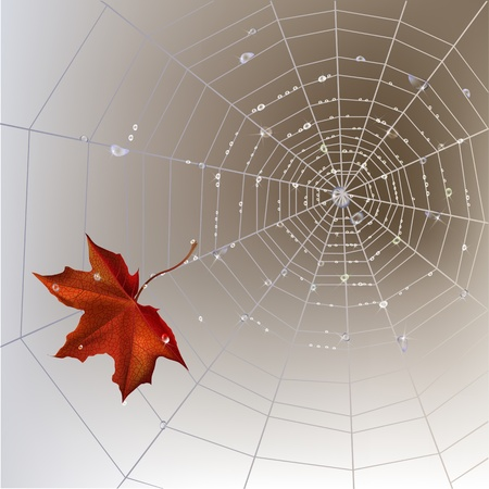 Autumn background with spider web with transparent shining water drops. Vector