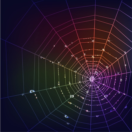 spider web: Dark background with spider web and rainbow shining water drops.  Illustration