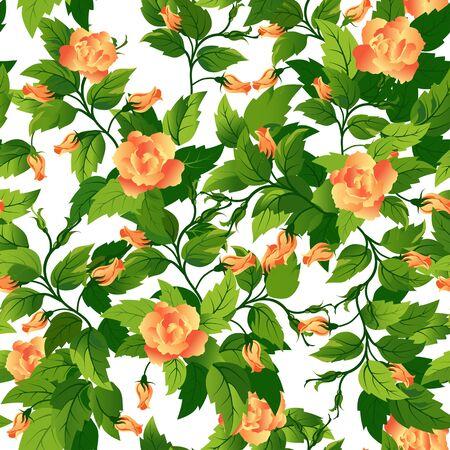 rosas naranjas: Hermoso fondo transparente con rosas de color naranja y hojas verdes. Vectores