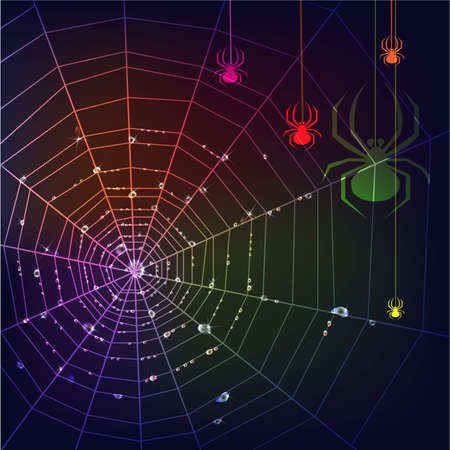 gossamer: Dark background with  colorful spiders, web and water drops.