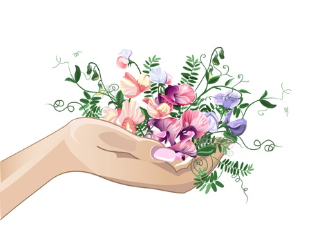 hollow body: Woman hand with sweet pea colorful flowers. Illustration