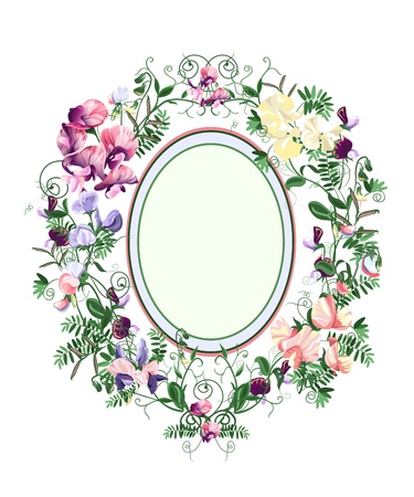 sweet pea: Decorative floral frame from sweet pea flowers and leafs.