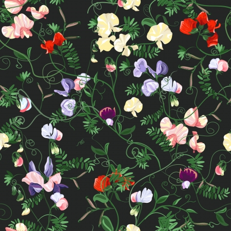 sweet pea: Decorative colorful seamless with sweet pea patterns. Illustration