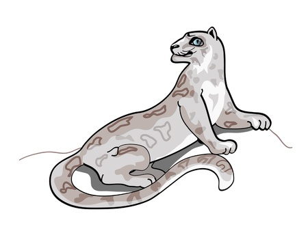 rare animals: Simple drawing of snow leopard.
