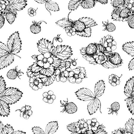 Vintage strawberries vector seamless background. Illustration