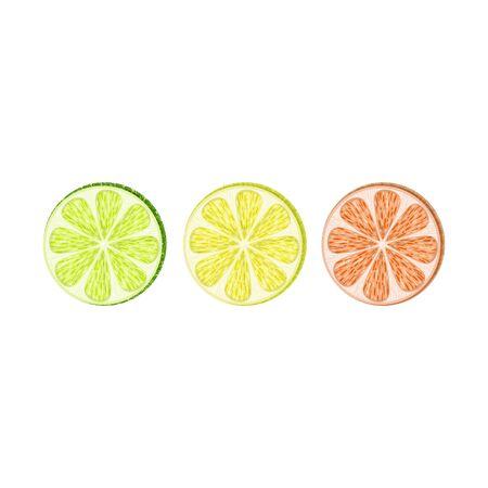 Vector set of lemon, lime, grapefruit slices on white background.