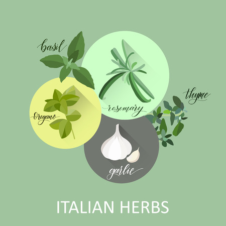 Italian herbes. Hand written names. Aromatic cooking herbs