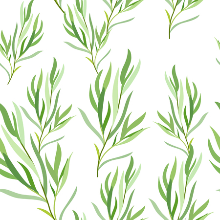Seamless pattern with tarragon leaves. Botanical illustration. Vector