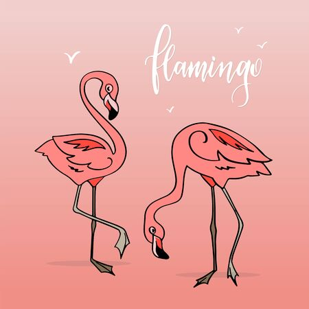 Flamingo in cartoon style. Stickers. Hand drawn illustration. Elements for greeting card, poster, banners. T-shirt, notebook and sticker design