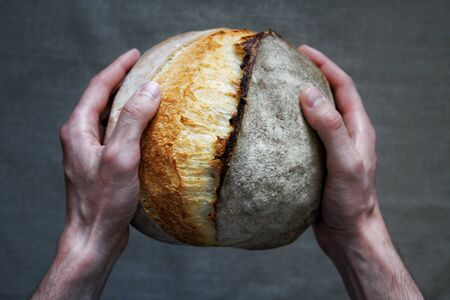 Baker man holding white sourdough bread. Homemade bread.