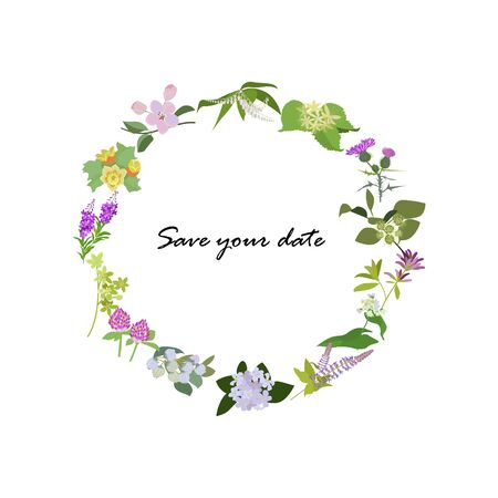 Frame from wild flowers. Unique decoration for greeting card, wedding invitation, save the date. Isolated floral design. Summer plant with space for your text. eps10 vector illustration.