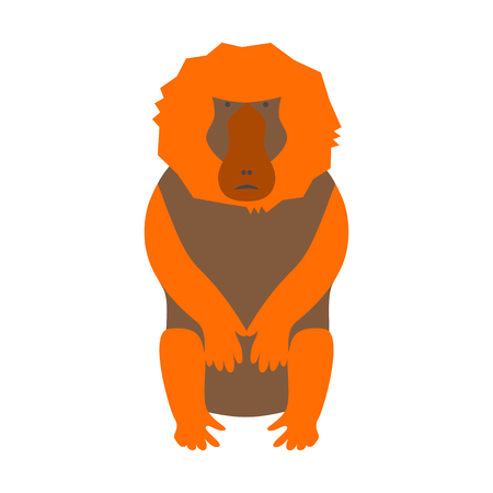African animal element and icon. Illustration of monkey baboon in modern flat design.