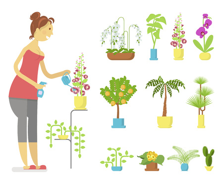 Window gardening infographic elements. Woman floriculturist takes care of indoor flowers. Vector set of flat illustration of horticultural sundry, house plants and flowers in pots. EPS 10 Illustration