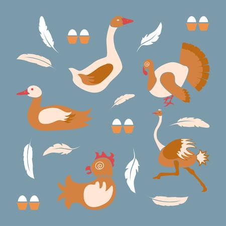 Poultry farm banner Illustration