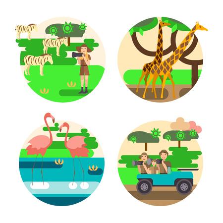 African safari concept