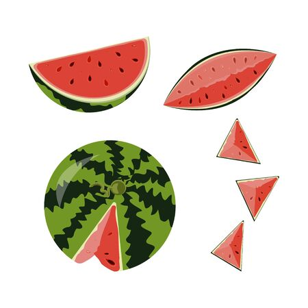 ed fruit watermelon