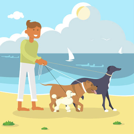 beach sunset: Professional Dog Walker